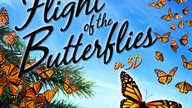 flight of the butterflies reviews poster